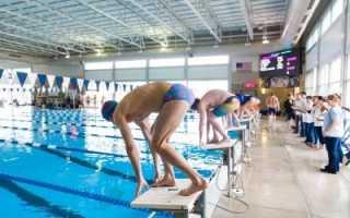Старт в плавании: техника прыжка с тумбочки в кроле на груди и из воды на спине, правила и виды, видео